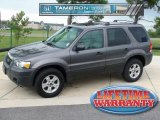 2006 Dark Shadow Grey Metallic Ford Escape XLT V6 #33987474