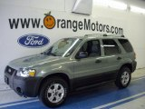2006 Titanium Green Metallic Ford Escape XLT V6 4WD #34095299