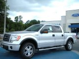 2010 Ingot Silver Metallic Ford F150 FX4 SuperCrew 4x4 #34446998