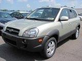 Hyundai Tucson 2008 Data, Info and Specs