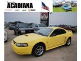 2003 Zinc Yellow Ford Mustang GT Coupe #34581566