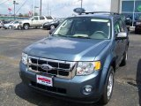 2010 Steel Blue Metallic Ford Escape XLT V6 4WD #34643173