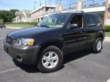 2006 Black Ford Escape XLT V6 #34736882