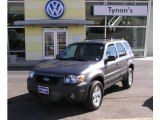 2006 Dark Shadow Grey Metallic Ford Escape XLT V6 4WD #3464012