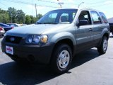 2006 Titanium Green Metallic Ford Escape XLS #34799722