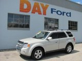 2009 Light Sage Metallic Ford Escape Limited V6 4WD #34799835