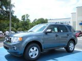 2010 Steel Blue Metallic Ford Escape XLT #34851097