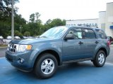 2010 Steel Blue Metallic Ford Escape XLT V6 #34851098