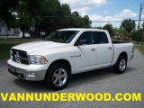 2009 Stone White Dodge Ram 1500 Big Horn Edition Crew Cab 4x4 #34923492