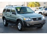 2006 Titanium Green Metallic Ford Escape XLT V6 #34994767