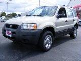 2003 Gold Ash Metallic Ford Escape XLS V6 #35177398