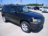 2006 Black Ford Escape XLT V6 #35178029