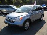2007 Glacier Blue Metallic Honda CR-V EX-L #35177854