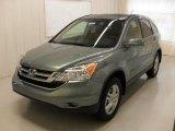2010 Opal Sage Metallic Honda CR-V EX-L #35222446