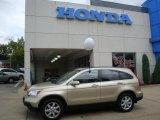 2008 Borrego Beige Metallic Honda CR-V EX-L 4WD #35283126