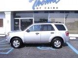 2009 Brilliant Silver Metallic Ford Escape XLT V6 #35283569