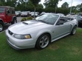 2002 Satin Silver Metallic Ford Mustang GT Convertible #35283575