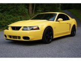 2003 Zinc Yellow Ford Mustang Cobra Coupe #35283617