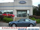 2011 Steel Blue Metallic Ford Fusion SE #35353829