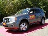 2009 Sterling Grey Metallic Ford Escape XLT V6 4WD #35427462