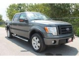 2010 Sterling Grey Metallic Ford F150 FX4 SuperCrew 4x4 #35551825