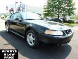2000 Black Ford Mustang GT Coupe #35551393