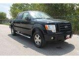 2010 Tuxedo Black Ford F150 FX4 SuperCrew 4x4 #35551828