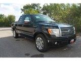 2010 Tuxedo Black Ford F150 Platinum SuperCrew #35551840