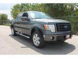2010 Sterling Grey Metallic Ford F150 FX4 SuperCrew 4x4 #35551841