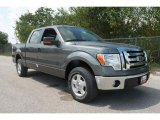 2010 Sterling Grey Metallic Ford F150 XLT SuperCrew #35551842