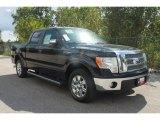 2010 Tuxedo Black Ford F150 XLT SuperCrew #35551853