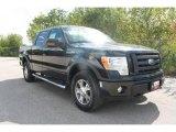 2010 Tuxedo Black Ford F150 FX4 SuperCrew 4x4 #35551856