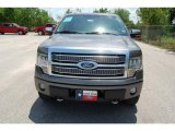 2010 Sterling Grey Metallic Ford F150 Platinum SuperCrew 4x4 #35551860