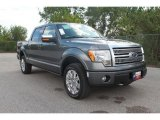 2010 Sterling Grey Metallic Ford F150 Platinum SuperCrew 4x4 #35551863