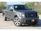 2010 Sterling Grey Metallic Ford F150 FX2 SuperCrew #35551885