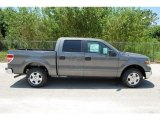 2010 Sterling Grey Metallic Ford F150 XLT SuperCrew #35551919
