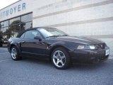 2003 Black Ford Mustang Cobra Convertible #35719703