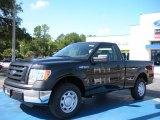 2010 Tuxedo Black Ford F150 XL Regular Cab #35788626