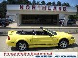 2002 Zinc Yellow Ford Mustang V6 Convertible #35899692