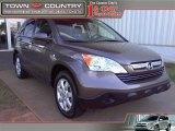2009 Urban Titanium Metallic Honda CR-V EX-L 4WD #35956281
