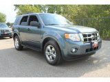 2010 Steel Blue Metallic Ford Escape XLT #35974889