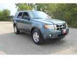2010 Steel Blue Metallic Ford Escape XLT V6 #35974891