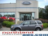 2011 Sterling Grey Metallic Ford Escape XLT 4WD #35998741