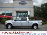 2010 Ingot Silver Metallic Ford F150 XLT SuperCrew 4x4 #36062963