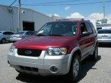 2006 Redfire Metallic Ford Escape Hybrid #36064650