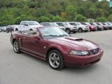 2004 Ford Mustang 40th Anniversary Crimson Red Metallic