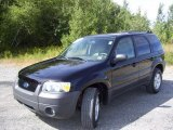 2006 Black Ford Escape XLT 4WD #36294688
