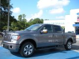2010 Sterling Grey Metallic Ford F150 FX2 SuperCrew #36406282