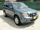 2010 Steel Blue Metallic Ford Escape XLT #36347294