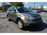 2009 Green Tea Metallic Honda CR-V EX-L #36622721